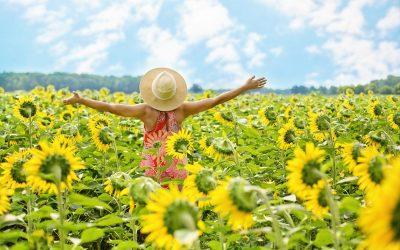 Gelukkig zijn is verrekte moeilijk, vijf mythes